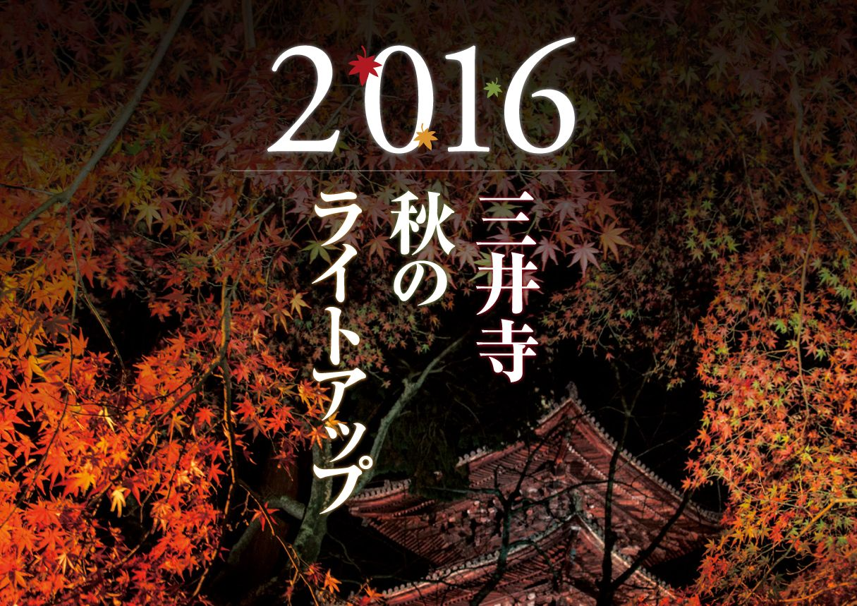 miidera_autumn_lightup_2016